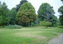 Aree verdi di Casale: novità per valorizzarle con sponsorizzazioni e il progetto Regala un albero
