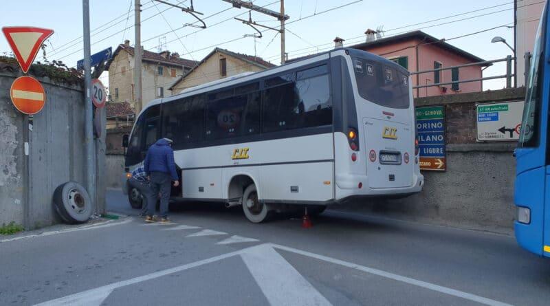 CIT autobus